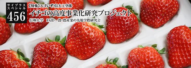 [サイプラススペシャル]456 イチゴの高度事業化研究プロジェクト 【特集】スゴいぞ!信大工学部